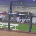 8 of the 15 people in attendence after the 6th inning